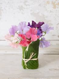 Sweet Pea Images Flower - sweet peas keep it simple hgtv