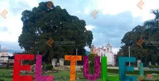 bureau des hypoth鑷ues de festejan al milenario árbol tule en oaxaca canal gente libre