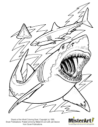 shark coloring pages printable images kids aim