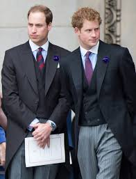 prince william and prince harry pictures popsugar