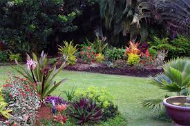 tropical garden design ideas home design and decoration portal