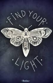 moth in relation to stalker eevee s psychic