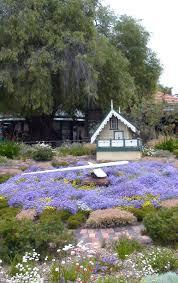 kings park native plant sale simple simon says perth kings park bortanic gardens