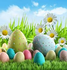 Easter Backdrops 4x6ft 1 25x2m Blue Sky And Colorful Easter Eggs And Daisy