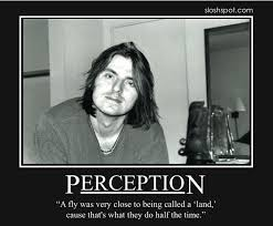 Mitch Hedberg Memes - 20 best mitch hedberg images on pinterest mitch hedberg funny