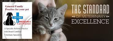 target black friday hours nashua nh animal hospital of nashua 24 7 emergency 603 821 7222