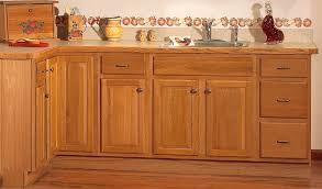 Best Kitchen Base Cabinets Contemporary Aamedallionsus - Base kitchen cabinets