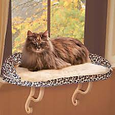 Window Seats For Dogs - cat window perch cat shelves u0026 perches petsmart