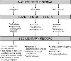 Sedimentology And Geochemical Evaluation Of Assessing The Anthropocene With Geochemical Methods Geological
