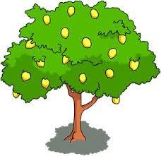 best 25 wiki tree ideas on tree house designs