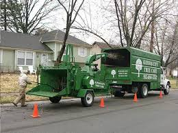 quality tree service equipment kansas city tree care llc