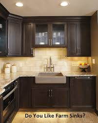 louisville cabinets and countertops louisville ky farm sinks for the win carefree kitchens wellborn cabinets