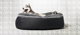 Bean Bed Bean Bag Blog It U0027s A Sleeping Dog U0027s Life Pet Lounger Bean Bed