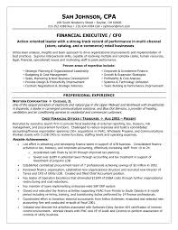 Life Insurance Agent Resume Executive Cfo Resume