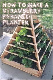 Planning A Backyard Garden by Best 25 Box Garden Ideas Only On Pinterest Raised Gardens