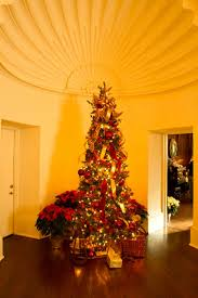 57 best holiday at the arboretum images on pinterest dallas 12