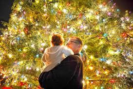 christmas tree lightings across orange county u2013 orange county register