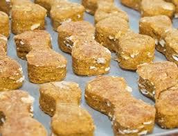 recipes for dog treats 5 pumpkin dog treat recipes the