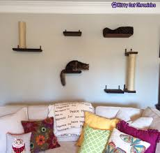 cat wall archives kitty cat chronicles