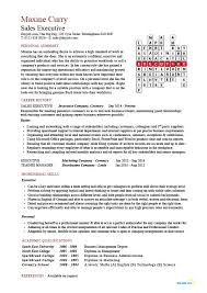 Example Format Of Resume by Sales Executive Cv Template Example Marketing Executive Revenue