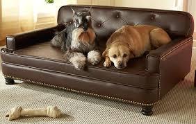large dog sofa bed uk brokeasshome com
