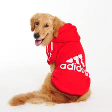 28 pieces clothing dogs amazon