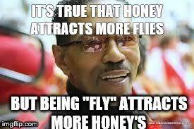 Fly Meme - the fly meme generator imgflip