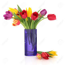 flower vases images u0026 stock pictures royalty free flower vases