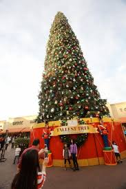 the 13th annual tree lighting concert at the citadel outlets on