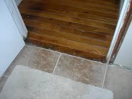 Hardwood Floor Doorway Transition Threshold Between Hardwood Floor And Tiling Into Bathroom