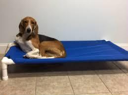 Pvc Pipe Dog Bed Pet Supply Store Gaffney Sc Dunwishin Enterprises Llc