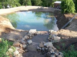 Backyard Swimming Ponds by 500 000 Gal Diy Swimming Earth Pond Doityourself Com