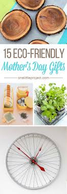 gifts for mothers 15 eco friendly s day gifts