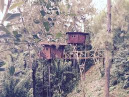 Treehouse Examples The Tree House Ginigathena U2013 Updated 2018 Prices