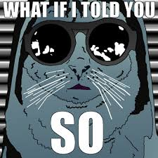 Morpheus Cat Meme - morpheus cat told you so my cats sent from space and other
