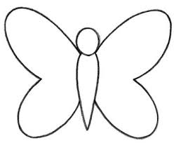 learn how to draw a butterfly for quarto creates