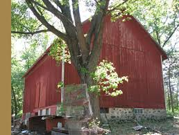 The Barn In Lake Alfred Save A Barn Featured Barn