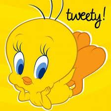 tweety wallpaper 127 fan uploads tattoo share