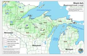 Michigan Indian Tribes Map by Forest Pests