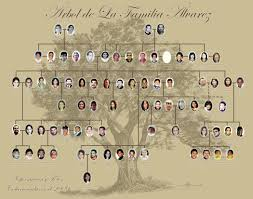 png template 12x12 combine family tree base by digitaldesignscb
