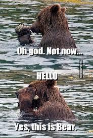 Hello Meme Funny - funny beard hello meme bajiroo com