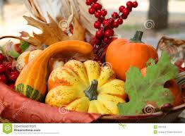 thanksgiving harvest basket royalty free stock image image 3301356
