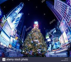 tree lights times square midtown manhattan new york city
