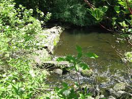 Suny Oswego Map Rice Creek Field Station Trails Fallbrook Recreation Center