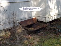 crawl spaces make no sense to this olympia home inspector