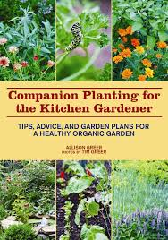 companion planting for the kitchen gardener tips advice and