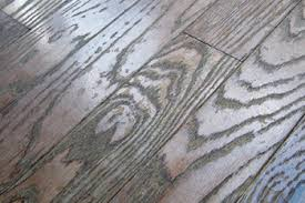 hardwood floor maintance questions sullivan hardwood flooring llc