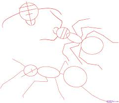how to draw an ant step by step bugs animals free online