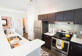 Apartments Condos For Rent In Atlanta Ga 1 Bedroom Apartments For Rent Atlanta Ga Szfpbgj Com