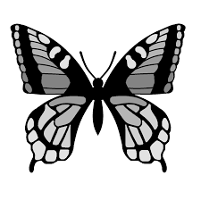 butterfly outline template cliparts co